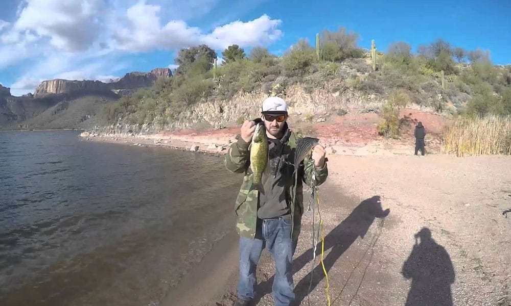 The ultimate beginners guide to bass fishing best tips for Apache lake fishing